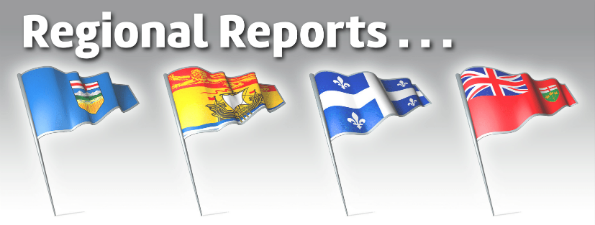 Regional Reports